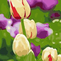 Живые тюльпаны - GX7062