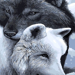 Волки добра и тьмы - GX9633
