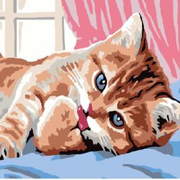 Утро кошки - GEX5048