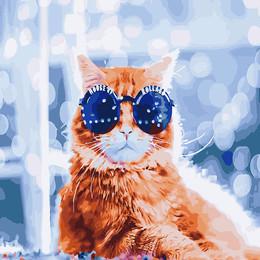 Стильный кот в бокэ - GX26237
